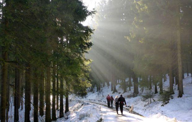 husky-trekking-heinade-wandern-natur