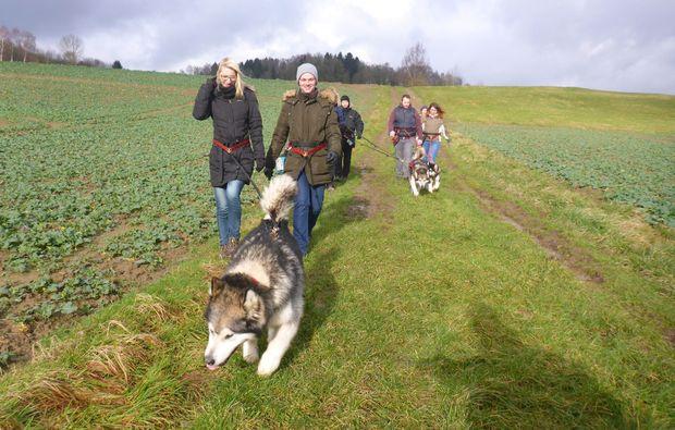 husky-trekking-heinade-wandern