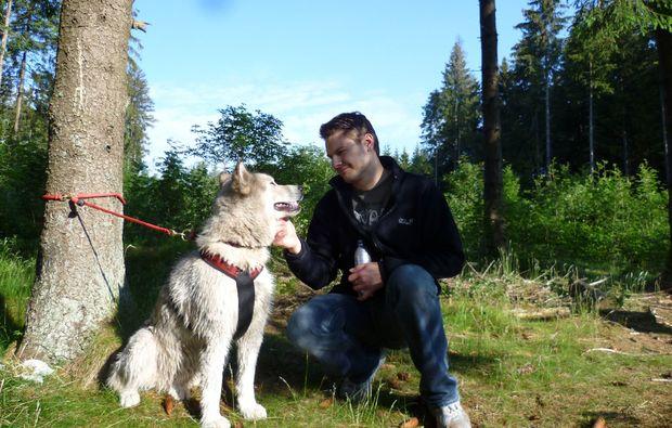 husky-trekking-heinade-wanderung