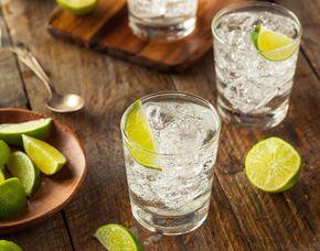 Whisky & Co. - Gin Tasting - 69 Euro - Salzburg von mind. 6 Sorten Gin & Tonic Water