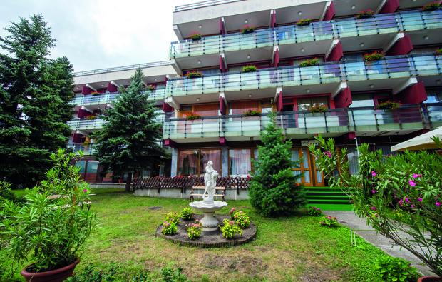 majerik-hotel-heviz_big_5