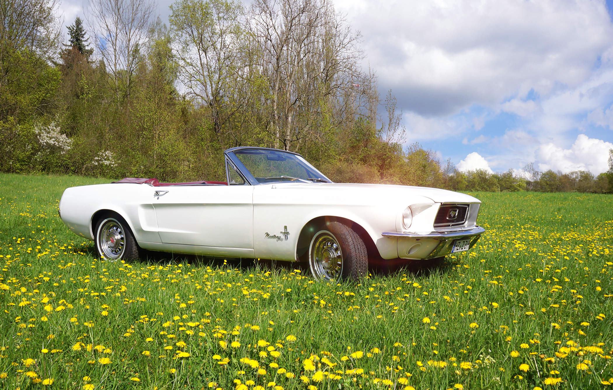 ford-mustang-oldtimer-tagestour-thale-bg1
