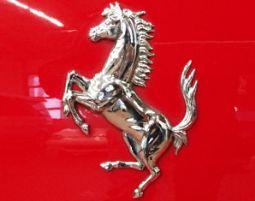 Ferrari fahren Neumarkt i. d. ...