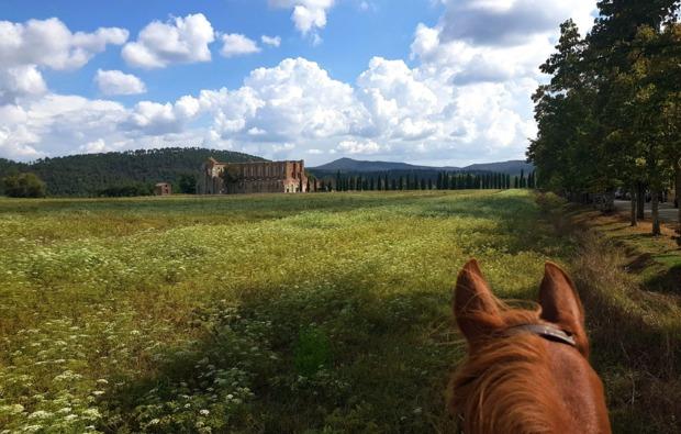 aktivurlaub-an-land-montieri-bg5