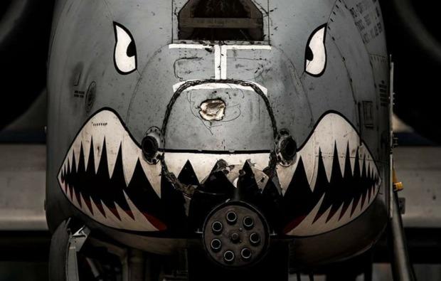 3d-flugsimulator-warthog-koeln-flugzeug