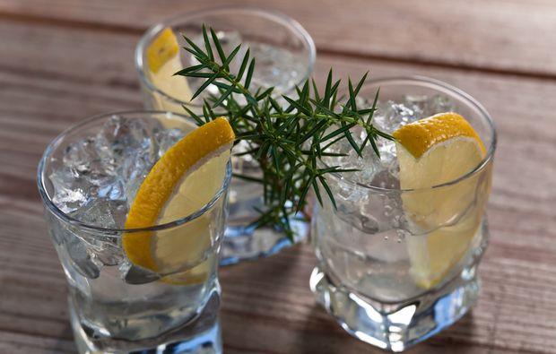 gin-tasting-wien-verkostung-seminar