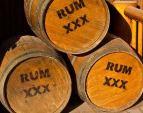Rum Tasting Hamburg