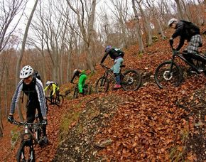 Mountainbike Kurs Fortgeschrittene - Bad Überkingen Kurs für Fortgeschrittene – 4,5 Stunden