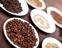 Kaffeeseminar Leipzig