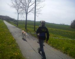 schlittenhunde-trekking-schwerin2