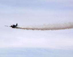 flug-kunstflug