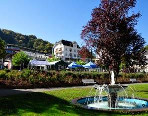 Thermen & SPA Hotels Hotel am Schwanenweiher - Eintritt Therme, Ganzkörper-Check
