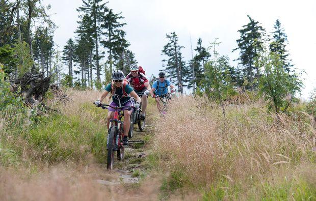 mountainbike-kurs-viechtach-sport