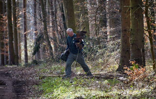 falkner-fuer-einen-tag