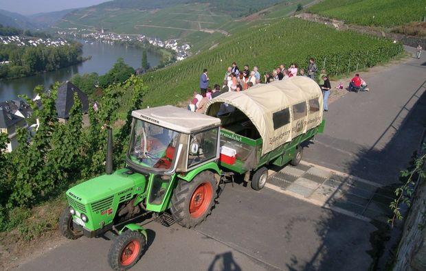 weinbergsrundfahrt-treis-mosel