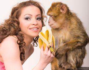 Tiere pflegen Wickede