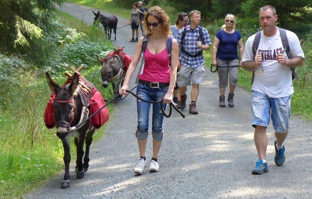 eseltrekking-clausthal-zellerfeld-wandern