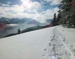 schneeschuh-wanderung2