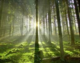 Kletterausrüstung Ulm : Wildnis wochenende obermarchtal ulm