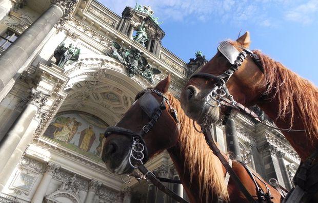 kutschfahrt-berlin-horses