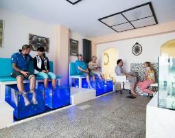 fisch pedik re f r zwei in berlin als geschenkidee mydays. Black Bedroom Furniture Sets. Home Design Ideas