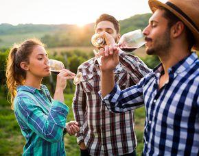 Weinverkostung für Zwei von 5 Weinen mit Kellerführung