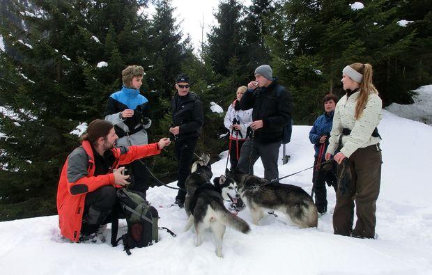 husky-trekking-nueziders-freunde