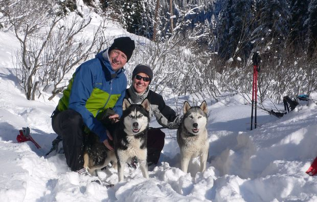 husky-trekking-nueziders-hundeliebe