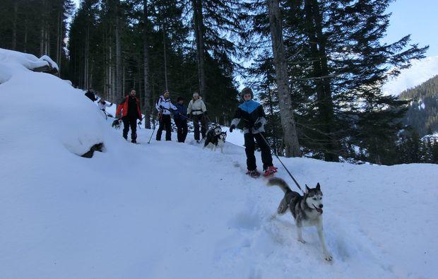 husky-trekking-nueziders-spass