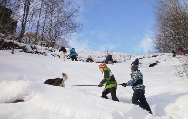husky-trekking-nueziders-winter