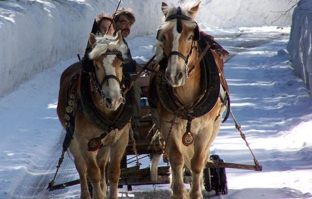 pferdeschlittenfahrt-wildalpen-romantisch