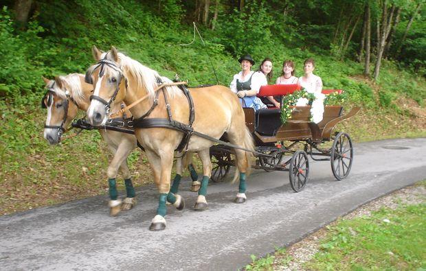 pferdeschlittenfahrt-wildalpen-sommer