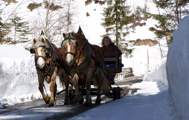 pferdeschlittenfahrt-wildalpen-winter