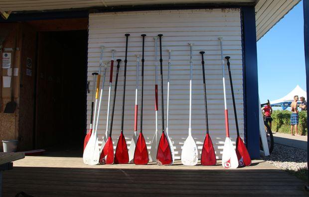 stand-up-paddling-schwedeneck-surendorf-paddel