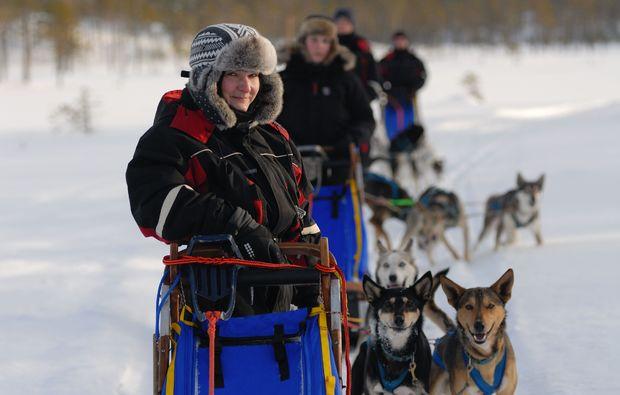 schlittenhundefahrt-saerna-love