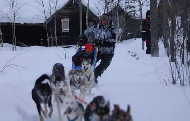 schlittenhundefahrt-saerna-tour