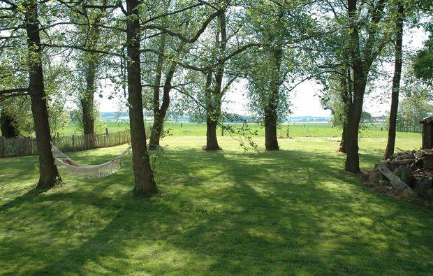 fotokurs-oberhausen-baeume
