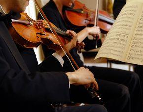 Konzert & Dinner Wien