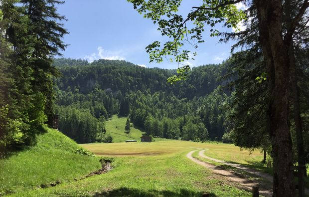 kraeuterwanderung-reit-im-winkl-wandern
