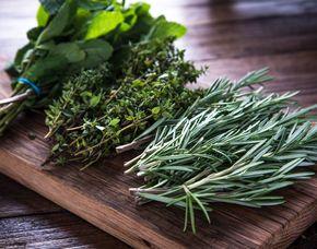 Kräuterwanderung mit Herstellung von Teemischungen