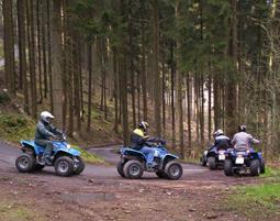 quad-2