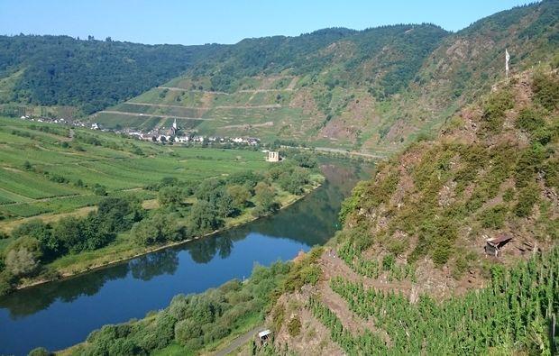 weinbergwanderung-ediger-eller-berg