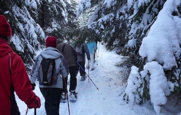 schneeschuh-wanderung-clausthal-zellerfeld-action