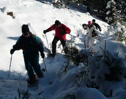 Schneeschuh-Wanderung- Clausthal-Zellerfeld Wanderung inkl. Snack - ca. 4 Stunden