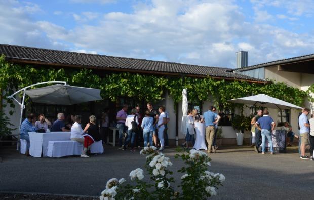 weinbergwanderung-rohrbach-bg5