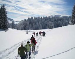 Schneeschuh Wanderung - Feldberg Wanderung - ca. 4 Stunden