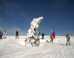 Schneeschuh-Wanderung-5