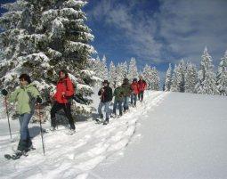 Schneeschuh-Wanderung-7