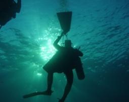 Open Water Diver / * Bronze - Wuppertal Open Water Diver / IDA/CMAS * Bronze