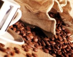 Kaffeeseminar   Hattersheim mit Verkostung